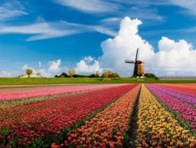 Olanda-paesaggio