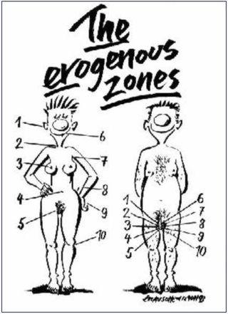 Zone-erogene
