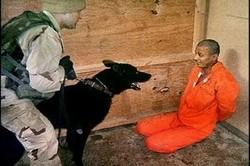 Guantanamo_cani