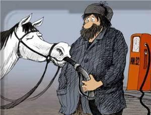 Cavalli_e_ottani