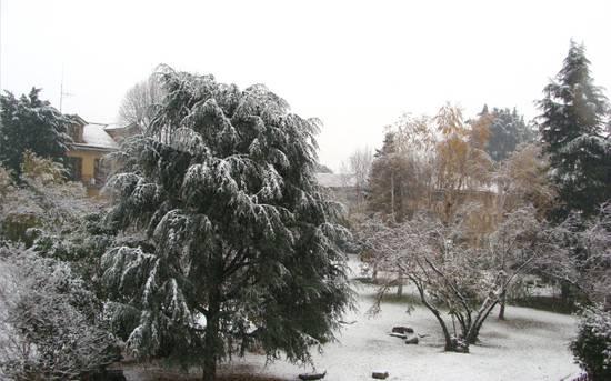 Neve20081127_2
