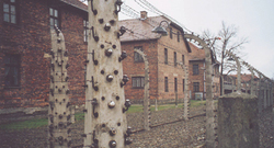 Auschwitz3_1